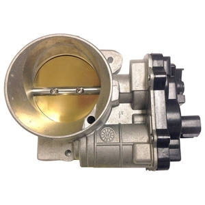 Picture for category Throttle Body
