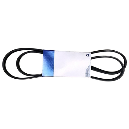 1.0L Drive Belt